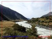 2020 紐西蘭〜庫克山國家公園:P1286649.jpg