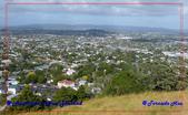 2020 紐西蘭~奧克蘭:L1260119.jpg