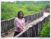 2005年彩虹的故鄉:帛琉:IMGP1085.jpg