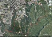 2012年四獸山步道:111.jpg