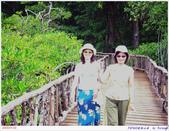 2005年彩虹的故鄉:帛琉:IMGP1086.jpg
