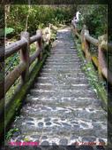 2012年歲末東埔溫泉之旅:L1000476.jpg
