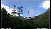 2010年與我同行之武陵遊憩區:PIC_5649.jpg