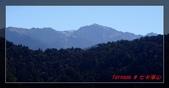 2010七卡淨山:DSC07280.jpg