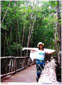 2005年彩虹的故鄉:帛琉:IMGP1089.jpg