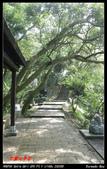 2012年四獸山步道:IMGP4255.jpg