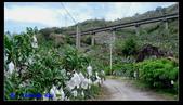2011年南迴鐵路西段踏勘:PIC_6997.jpg