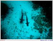2005年彩虹的故鄉:帛琉:IMGP0859.jpg