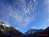 2020 紐西蘭〜庫克山國家公園:P1286608.jpg