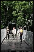 2010年與我同行之武陵遊憩區:PIC_5653.jpg