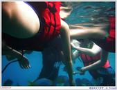 2005年彩虹的故鄉:帛琉:IMGP0876.jpg