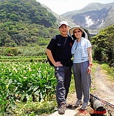 2008陽明山海芋節:DSC02802.jpg