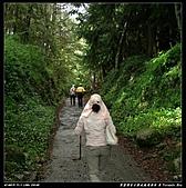 2010年與我同行之武陵遊憩區:PIC_5658.jpg