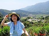 2008陽明山海芋節:DSC02805.jpg
