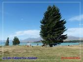 2020 紐西蘭〜蒂卡波湖 :L1240772.jpg