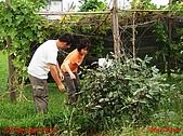 2007家居雜記:DSC01770