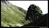 2010年雪山行:PIC_5413.jpg