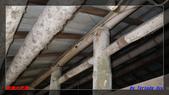 2012年碧雲山的古厝與老樹:IMGP4020.jpg