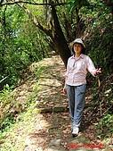 2008陽明山海芋節:DSC02785.jpg