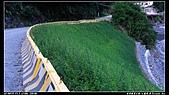 2010年與我同行之南橫公路霧鹿段:PIC_5922.jpg
