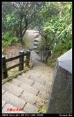 2012年四獸山步道:IMGP4180.jpg