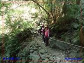 2018 錐麓古道:P7300214.jpg