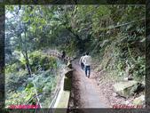 2012年歲末東埔溫泉之旅:L1000534.jpg