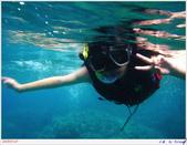 2005年彩虹的故鄉:帛琉:IMGP0894.jpg