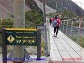 2020 紐西蘭〜庫克山國家公園:P1286640.jpg