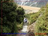 2020 紐西蘭〜庫克山國家公園:P1276470.jpg