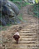 2010年福源山步道:DSC08503.jpg