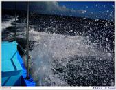2005年彩虹的故鄉:帛琉:IMGP0904.jpg