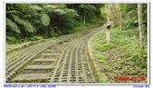 2012年石硦林場:IMGP4064.jpg