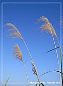 2010年福源山步道:DSC08506.jpg