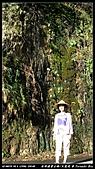 2010年與我同行之南橫公路霧鹿段:PIC_5938.jpg