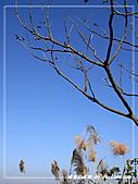 2010年福源山步道:DSC08508.jpg