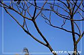 2010年福源山步道:DSC08510.jpg