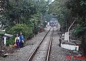 桃林鐵路:DSC02303.jpg