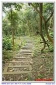 2012年石硦林場:IMGP4068.jpg