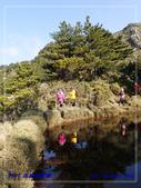 2019 再訪嘉明湖:P4232023.jpg