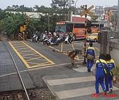 桃林鐵路:DSC02306.jpg
