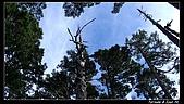 2010年雪山行:PIC_5440.jpg