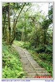 2012年石硦林場:IMGP4072.jpg