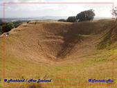 2020 紐西蘭~奧克蘭:P2057760.jpg