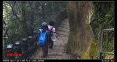 2012年四獸山步道:IMGP4195.jpg