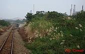 桃林鐵路:DSC02313.jpg
