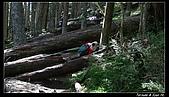 2010年雪山行:PIC_5449.jpg