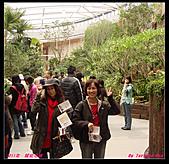 2011年花博新生園區:DSC08604.jpg