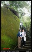 2012年四獸山步道:IMGP4198.jpg