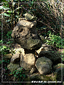 2010年福源山步道:DSC08521.jpg